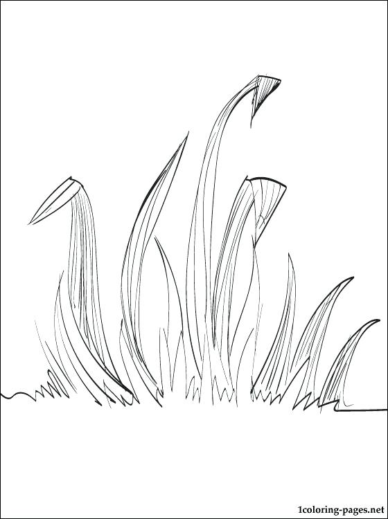 560x750 Track And Field Coloring Pages Grass Coloring Page Coloring Pages