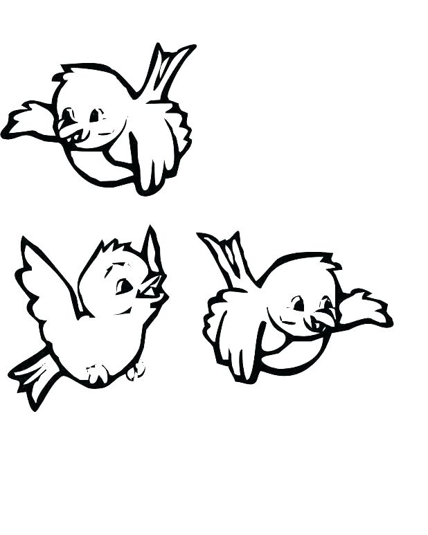 618x773 Coloring Page Of A Bird Angry Birds Coloring Online Birds Coloring