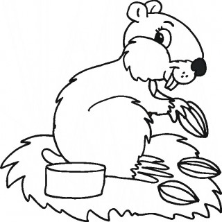 320x320 Dwalf Hamster Colouring Pages Picture Of An To Color