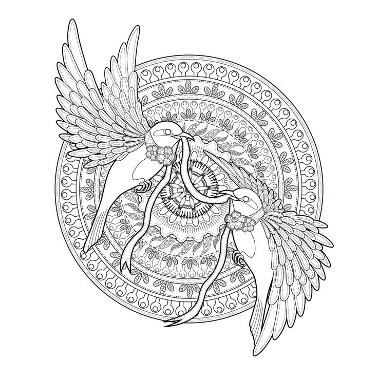 736x736 Adult Coloring Pages Mandala Transparent Background Download