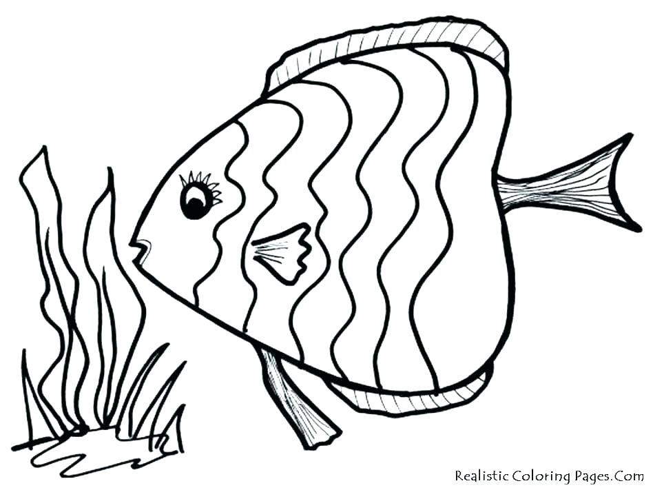 948x711 Fish Coloring Page Treble Clef Coloring Page Bass Coloring Pages