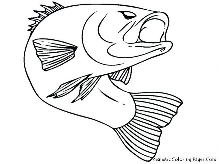 728x546 Treble Clef And Bass Coloring Page Pages Flowers Pdf Fish