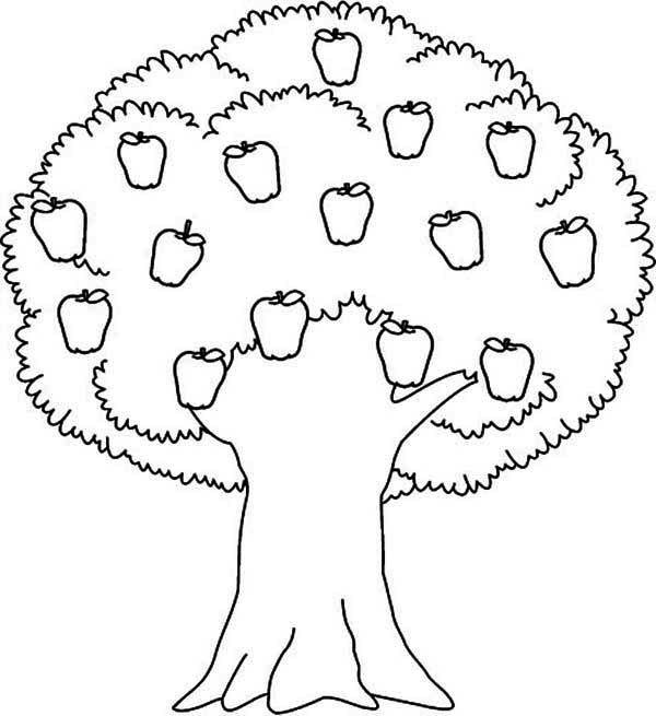 600x655 Impressive Ideas Apple Tree Coloring Page Picture Collection