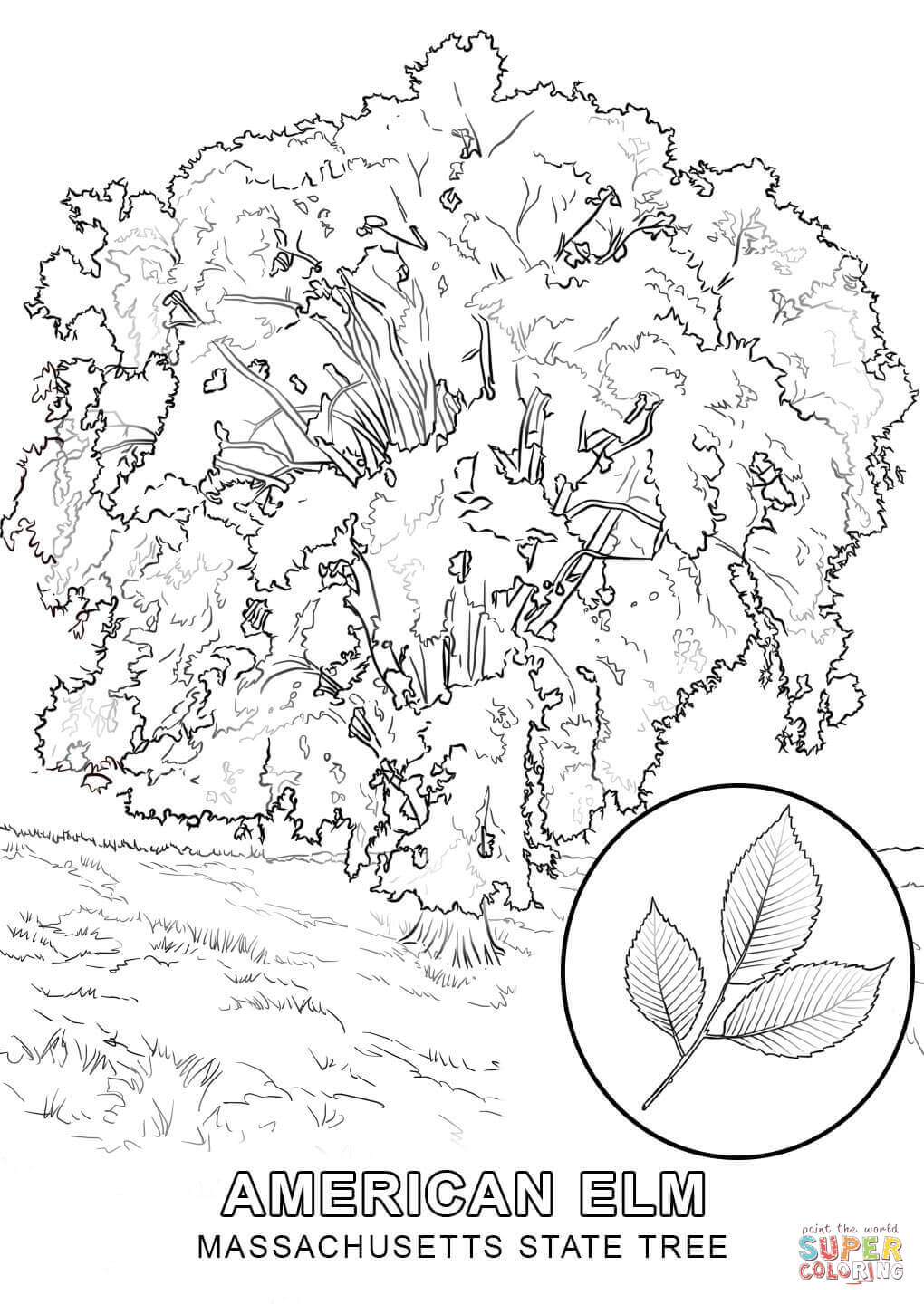 1020x1440 Tree Coloring Pages