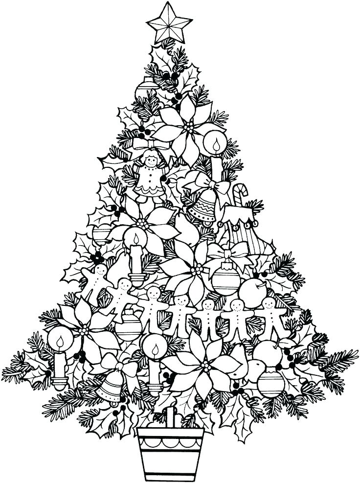 736x987 Tree Coloring Pages For Adults Palm Tree More Coloring Pages Free