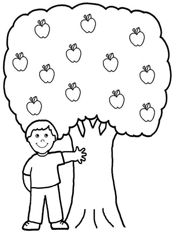 600x775 Exclusive Ideas Apple Tree Coloring Page For The Kids