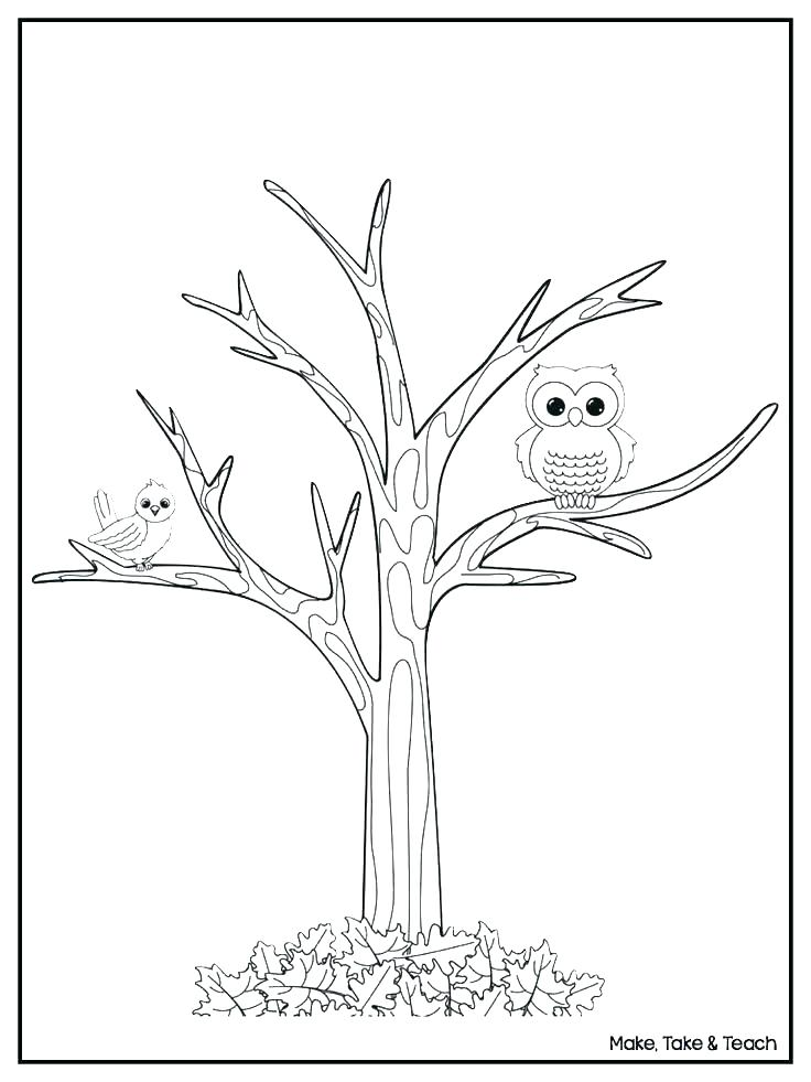 736x981 Fall Tree Coloring Pages Kids Coloring Tree Coloring Sheets