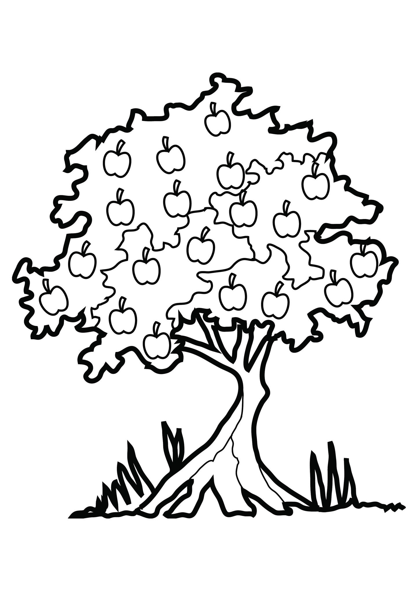 1444x2043 Tree Coloring Page Nature For Kids Printable Pictures Of Pine