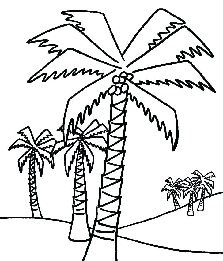 728x853 Bare Tree Branches Coloring Page Maple Tree Coloring Page Leaves