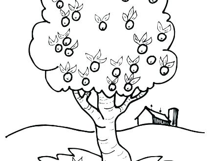 440x330 Coloring Pages Apple Apple Blossom Coloring Pages Coloring Book