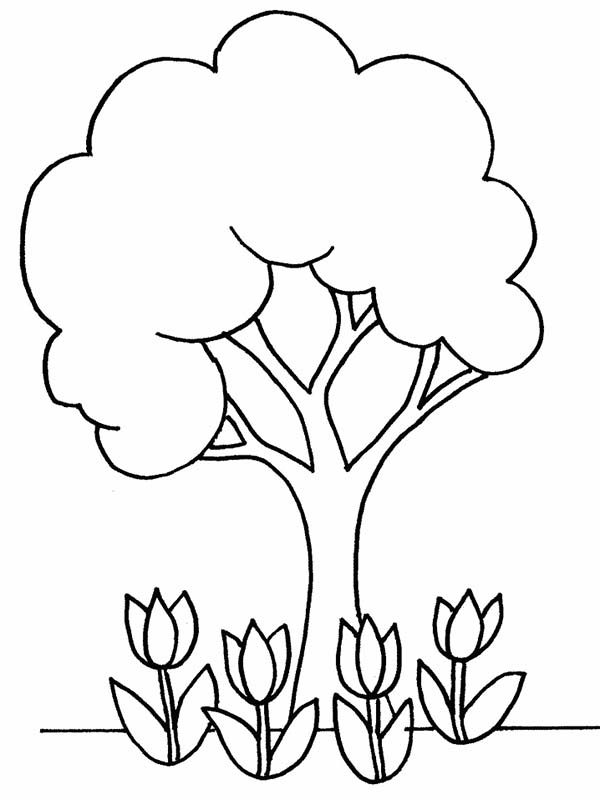 600x800 Coloring Pages Trees Plants And Flowers Plus Tree Of Life In Kids