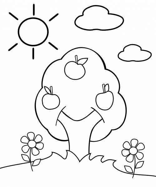 500x601 Preschool Coloring Page Apple Tree Attention Span