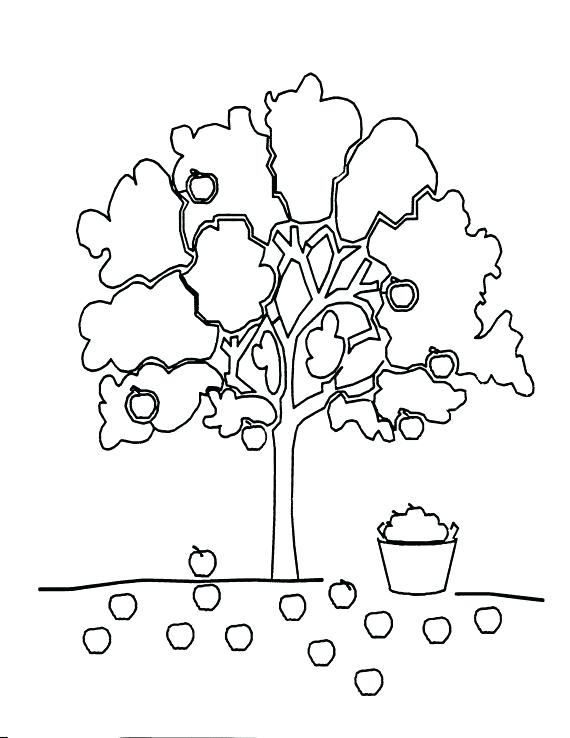 570x738 The Giving Tree Coloring Pages Preschool Coloring Sheets