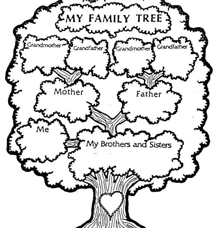 736x768 Printable Family Tree For Preschool Family Tree Coloring Pages