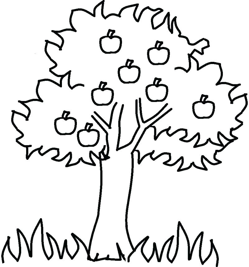 800x859 Free Coloring Pages Christmas Tree Coloring Pages Trees Coloring