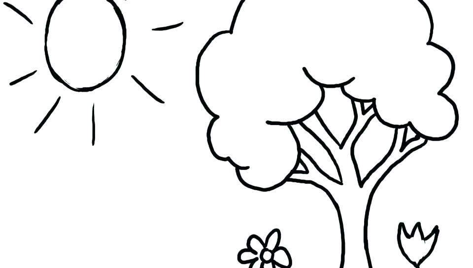 960x544 Free Tree Coloring Pages Apple Tree Coloring Page Free Tree