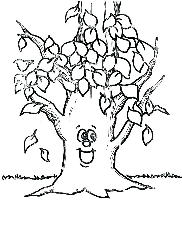 700x906 Printable Tree Coloring Pages Free Printable Tree Coloring Pages
