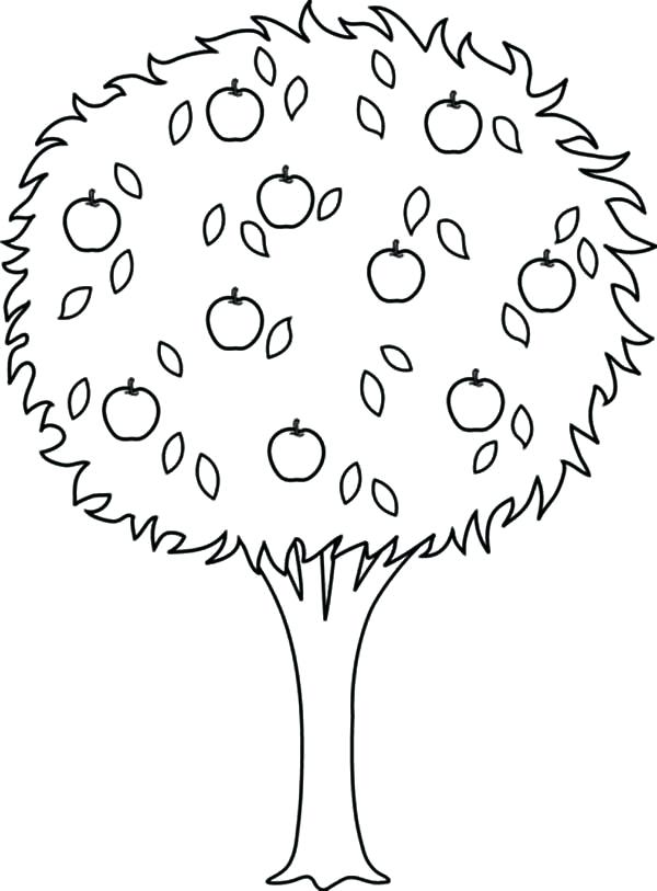 600x813 Apple Tree Coloring Pages Coloring Page Apple Tree Nature