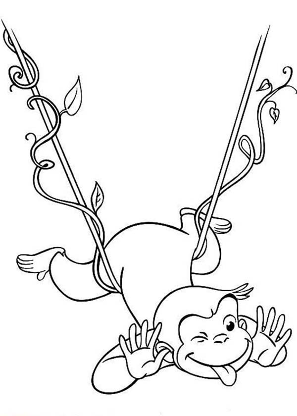 Tree Coloring Pages With Roots At Getdrawings Com Free For