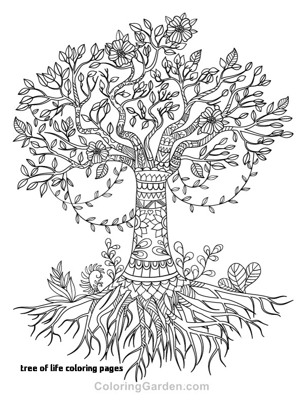 Tree Coloring Pages With Roots at GetDrawings.com | Free for ...