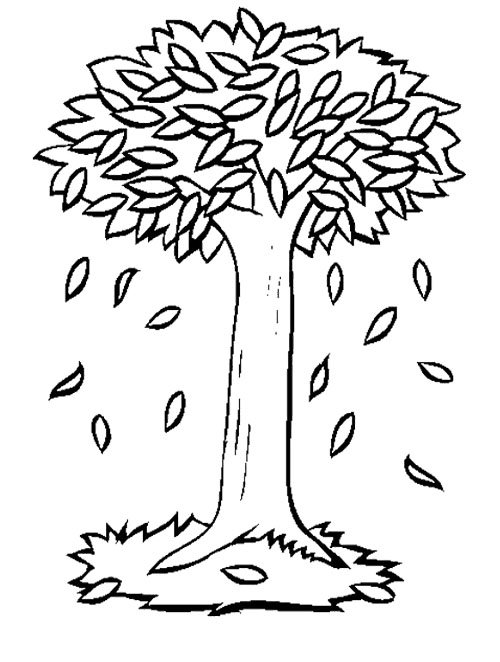500x662 Fall Tree Coloring Pages