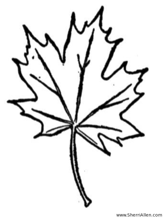 540x720 Kids N Coloring Pages Of Trees And Leaves