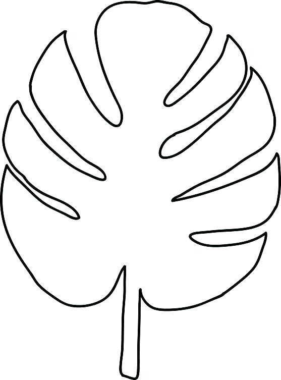 557x753 Leaf Stencils Printable Printable Leaves Coloring Pages Family