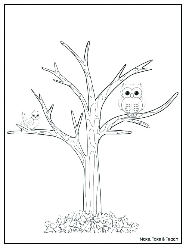 618x824 Tree Printable Coloring Pages Kids Coloring Tree Leaves Coloring