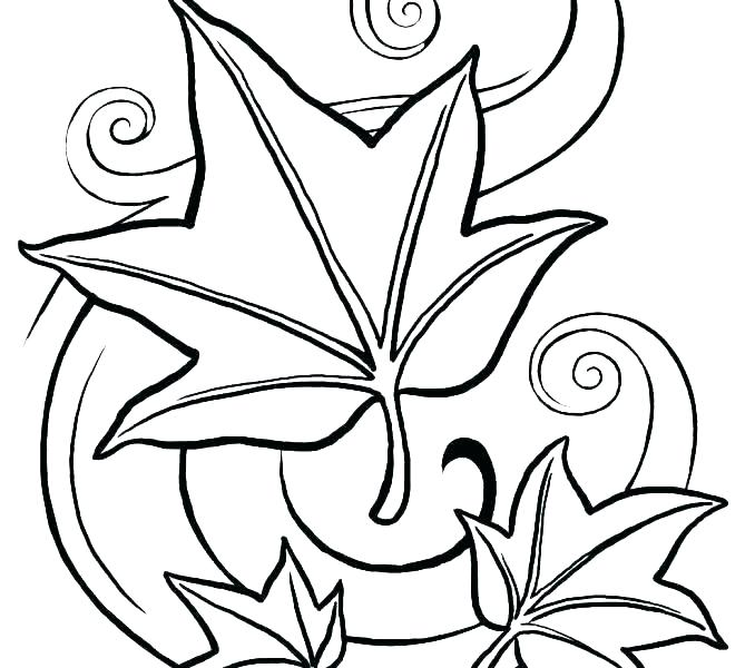 678x600 Coloring Page Leaf Coloring Pages Leaves Coloring Page