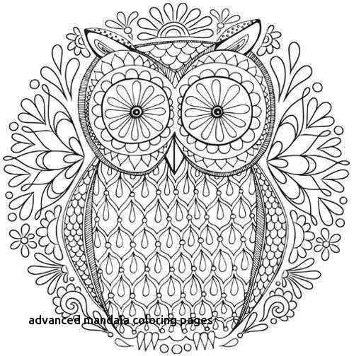 500x504 Fall Mandala Coloring Pages Kids And Adults Fall Trees