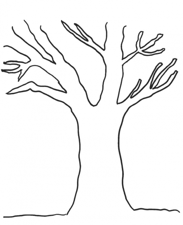 595x730 Skill Tree Trunk Coloring Page For Pages Sporturka Tree