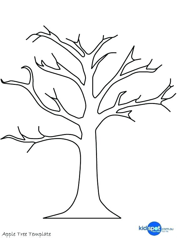 564x760 Tree Trunk Coloring Page Tree Trunk Coloring Page Bare Tree