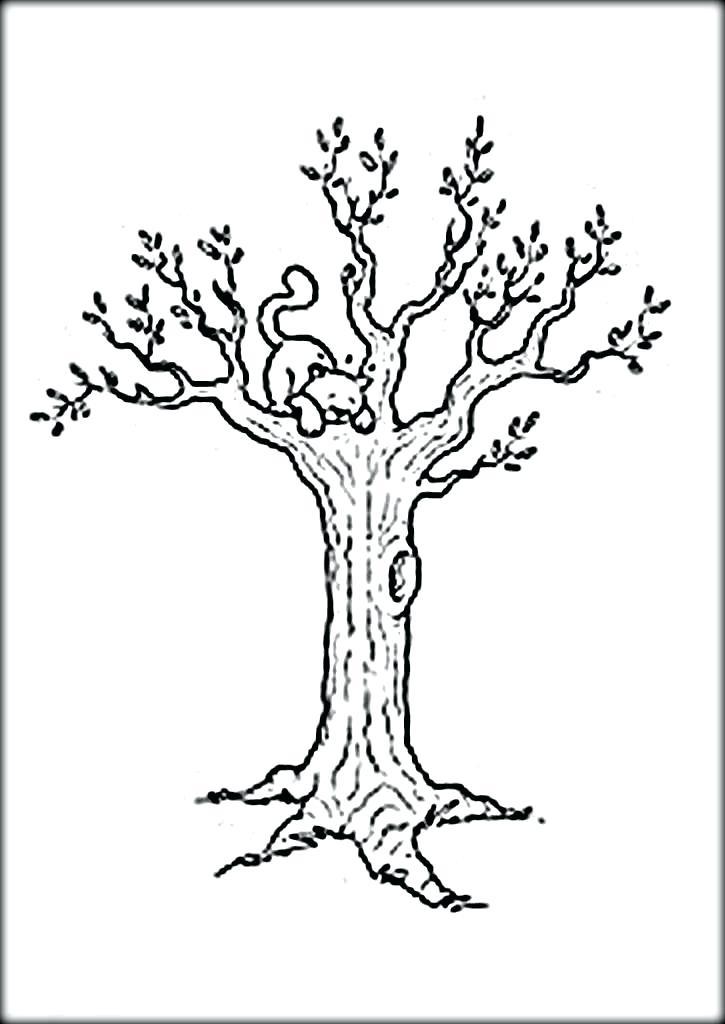 725x1024 Bare Tree Coloring Page Bare Tree Coloring Pages Color Bare Tree