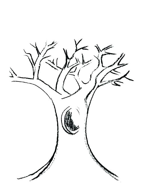 494x640 Tree Trunk Coloring Page