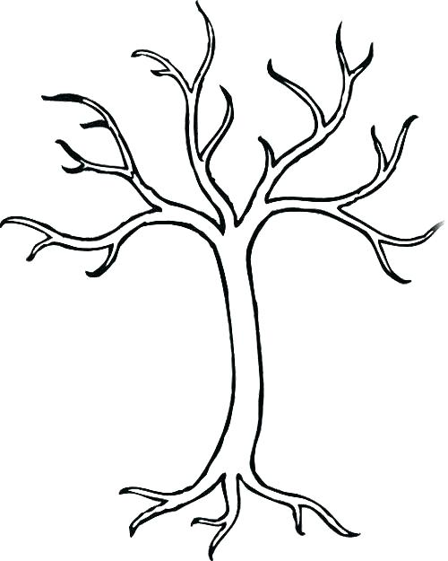 500x625 Bare Tree Coloring Page Bare Tree Coloring Sheet Bare Tree Trunk