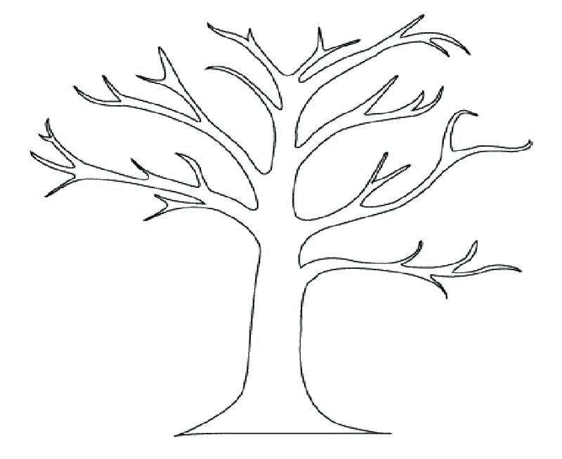 800x654 Bare Tree Coloring Page Tree Coloring Sheet Big Bare Tree Coloring