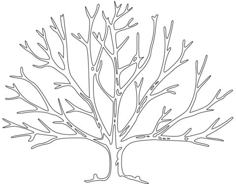480x375 Bare Tree Coloring Page Tree Trunk Coloring Pages Tree Trunk
