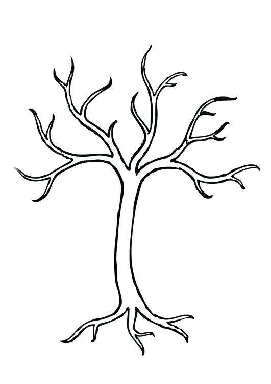 531x750 Coloring Page Tree Img Coloring Page Tree Coloring Page Tree