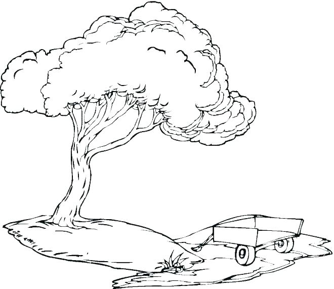 660x571 Coloring Pages Of Trees With Leaves Coloring Pages Of Trees