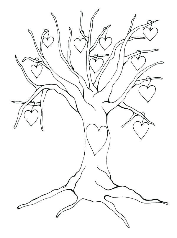 600x806 Tree Without Leaves Coloring Page Tree Without Leaves Coloring
