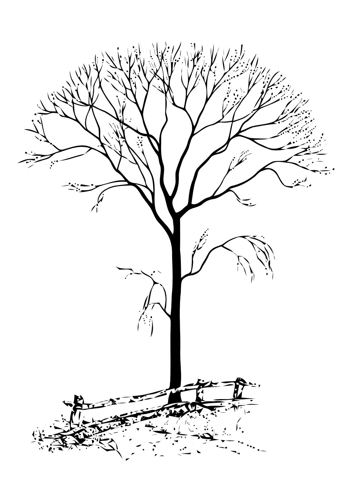 1240x1750 Trees Without Leaves Coloring Pages