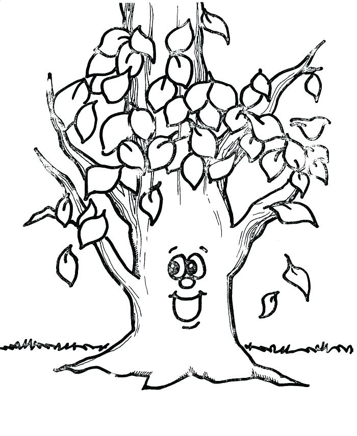 700x855 Bare Tree Coloring Page Coloring Pages Of Trees With Leaves Bare
