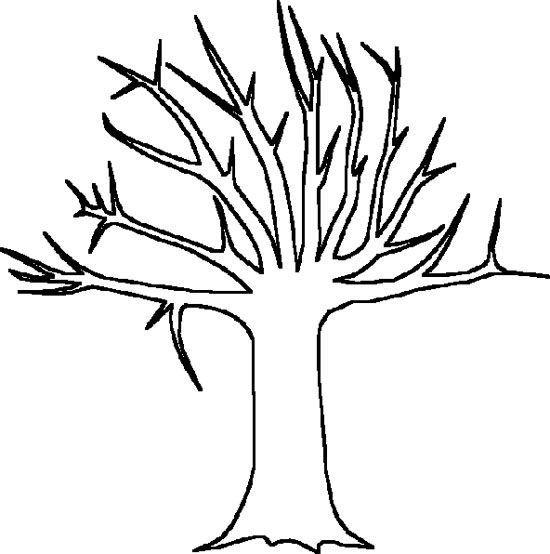 550x554 Big Tree Without Leaves Coloring Page Tree Sample