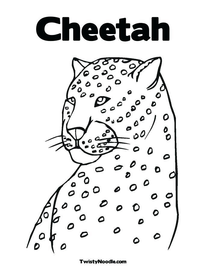 685x886 Cheetah Print Coloring Pages Cheetah Coloring Pages Free
