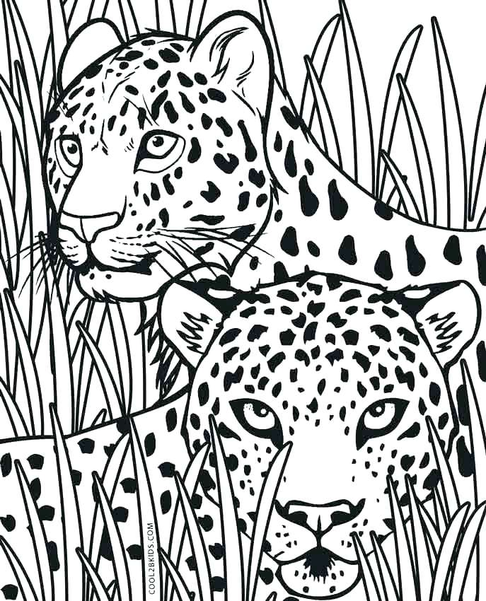 687x850 Cheetah Print Coloring Pages Cheetah Print Coloring Pages