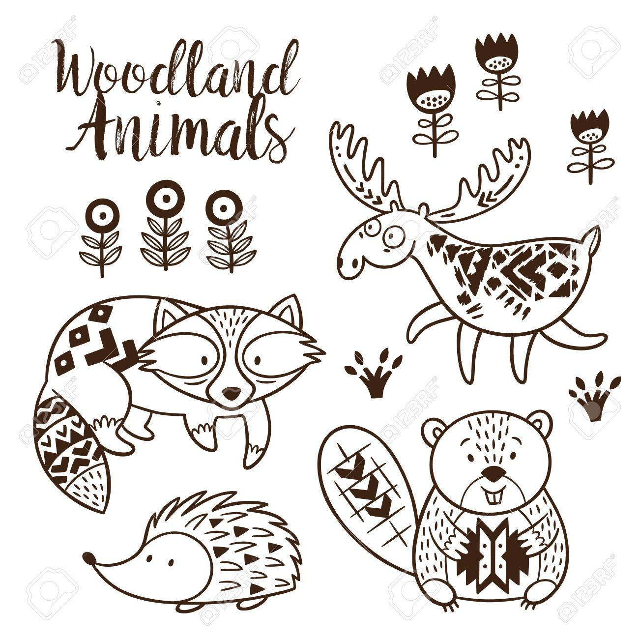 1300x1300 The Best Woodland Animal Coloring Pages For Kids Hand Drawn Vector