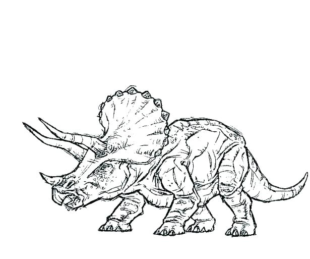 615x513 Mesmerizing Tyrannosaurus Rex Coloring Pages Mesmerizing