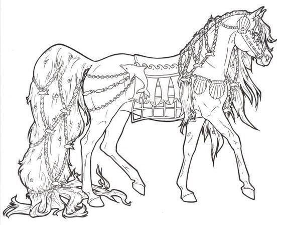 564x447 Cool Horse Coloring Pages
