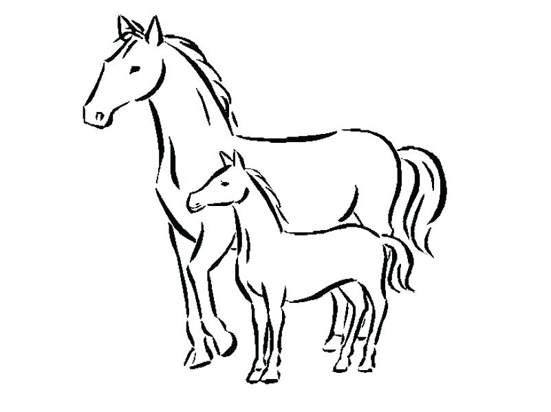 801x600 Free Printable Horse Coloring Pages For Adults Advanced Of Horses