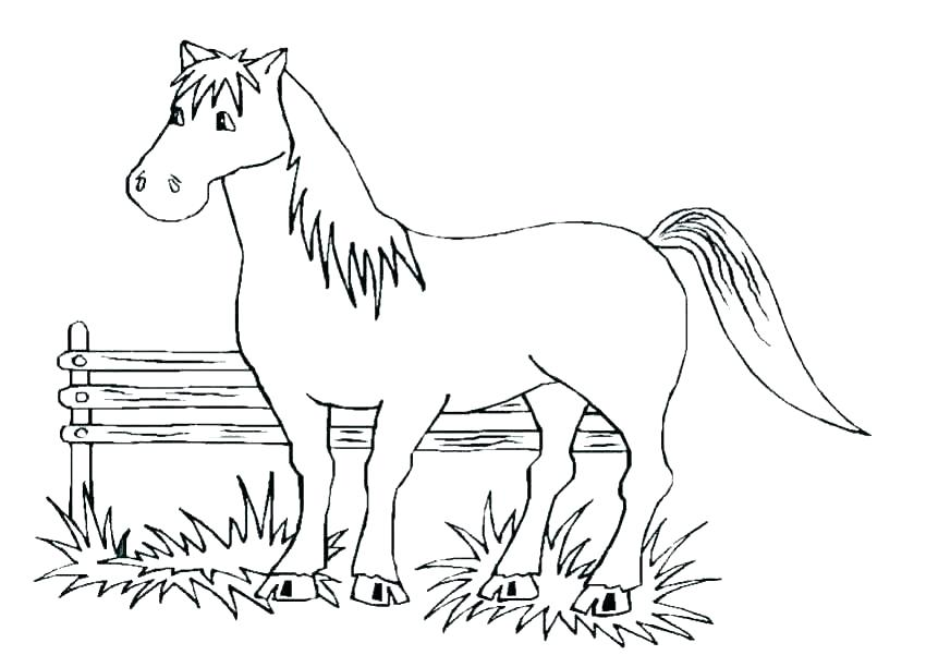 850x601 Horses Coloring Pages Horse Coloring Page For Adults Illustration